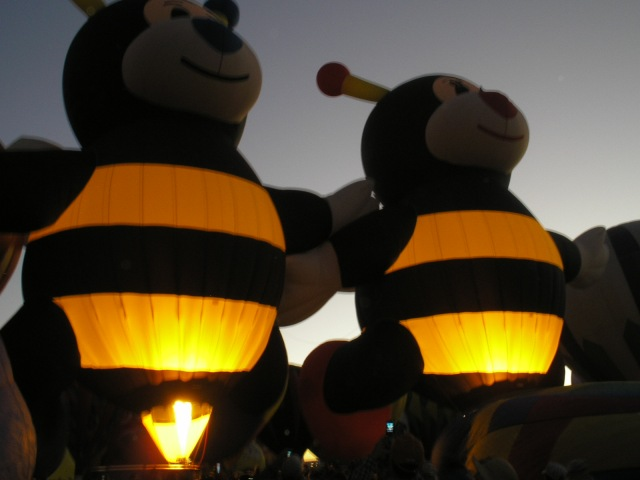 Bumblebees at the Balloon Fiesta
